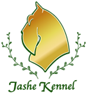 Jashe Kennel